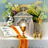 THÁNH THỂ VÀ LÒNG MẾN: TRƯỞNG THÀNH