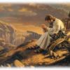 HOANG ĐỊA - THAO TRƯỜNG CỦA NHÂN ĐỨC